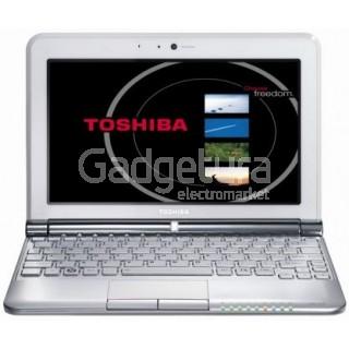 """Нетбук Toshiba NB305-10K (10.1"""" Intel Atom N455 1.66ГГц, 1Гб, 250Гб, Intel GMA 3150)"""